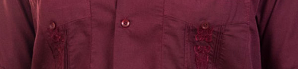 Embroidered Guayabera Top Detail